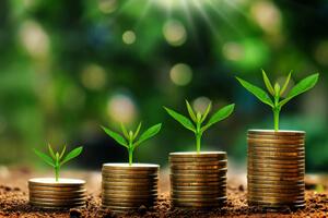 entreprise-vertes-taxes (2)